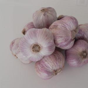 Photo of West Australian Garlic
